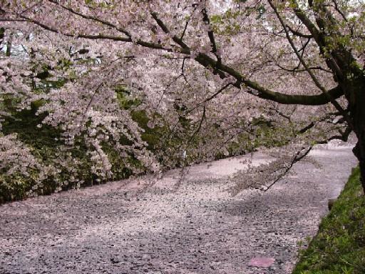 2010弘前金木02.jpg